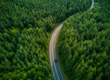 Driving Through Forest – Aerial View
